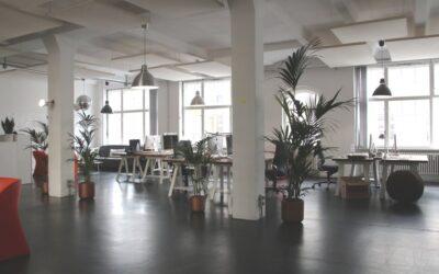 Estrategias de cómo hacer un entorno de trabajo SALUDABLE